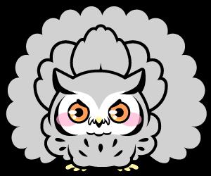 威嚇するアフリカオオコノハズク