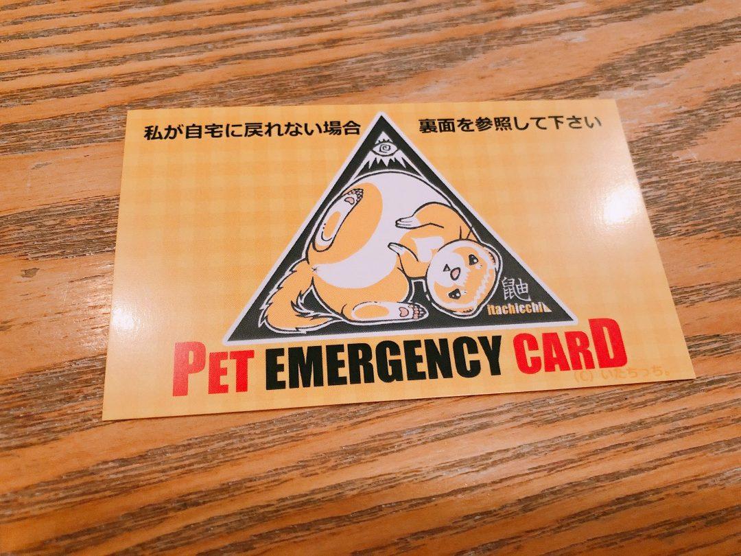 ペット用緊急連絡カード